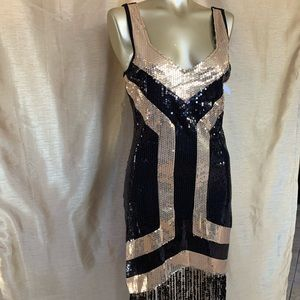 Great Gatsby - Roaring 20s Flapper Dress Costume